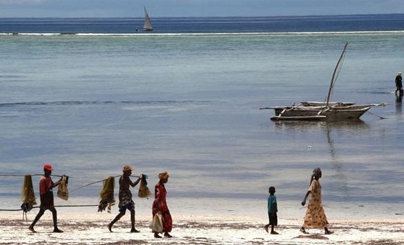 Слика од Занзибар: Остров на зачините, каде времето тече поинаку