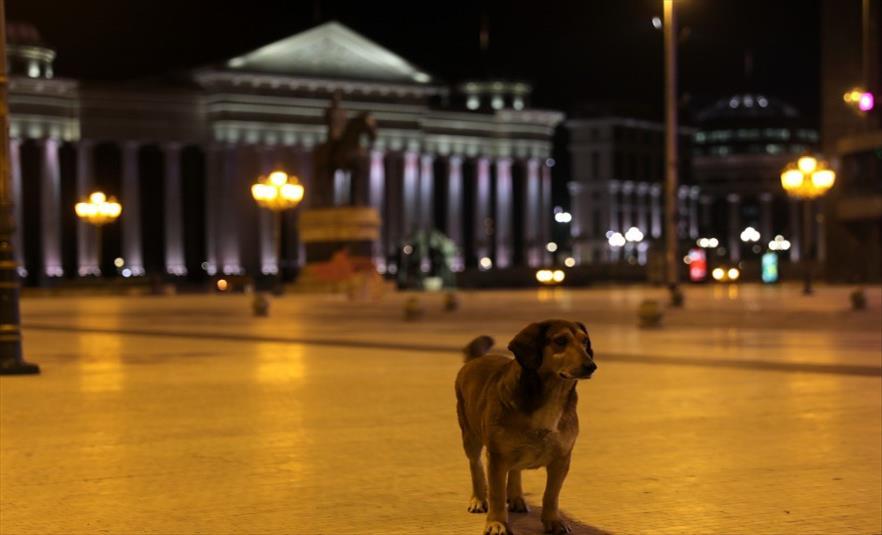 Слика од Скопје го чека полицискиот час (Галерија)