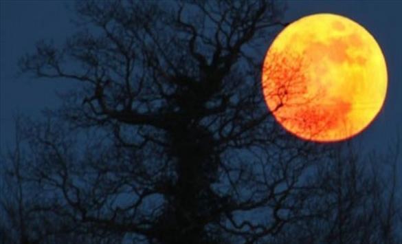 """Слика од Последната """"супер месечина"""" годинава од 6 до 8 мај"""