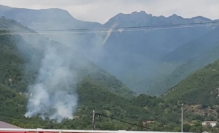 Слика од Пожар зафати околу 2000 квадратни метри над тетовски Лешок