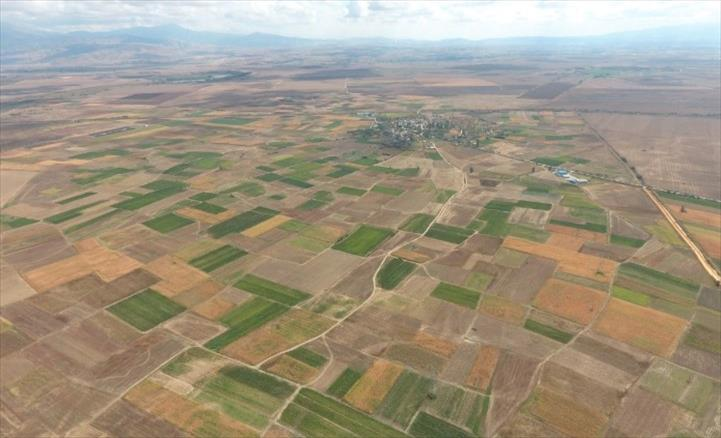 Слика од Со мали земјоделски парцели тешко е натпреварувањето на европскиот пазар и во глобалната економија