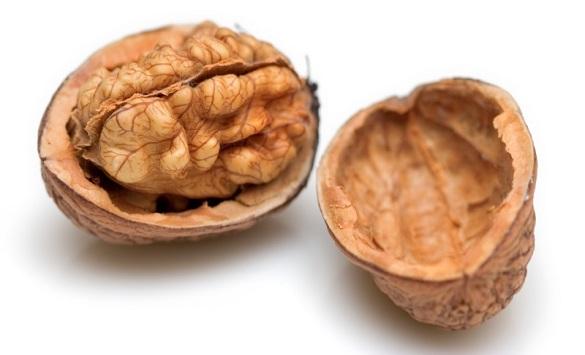 Слика од Оревите помагаат против стрес