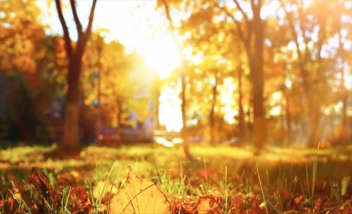 Слика од Во 15:30 попладне пристигнува есента
