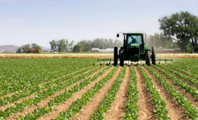 Слика од Земјоделството не доби директна поддршка во услови на КОВИД, најзагрозени малите производители