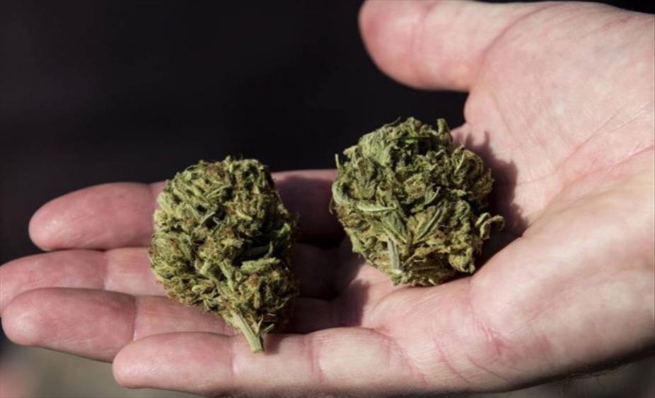Слика од Украдена марихуана од магацин во Валандово
