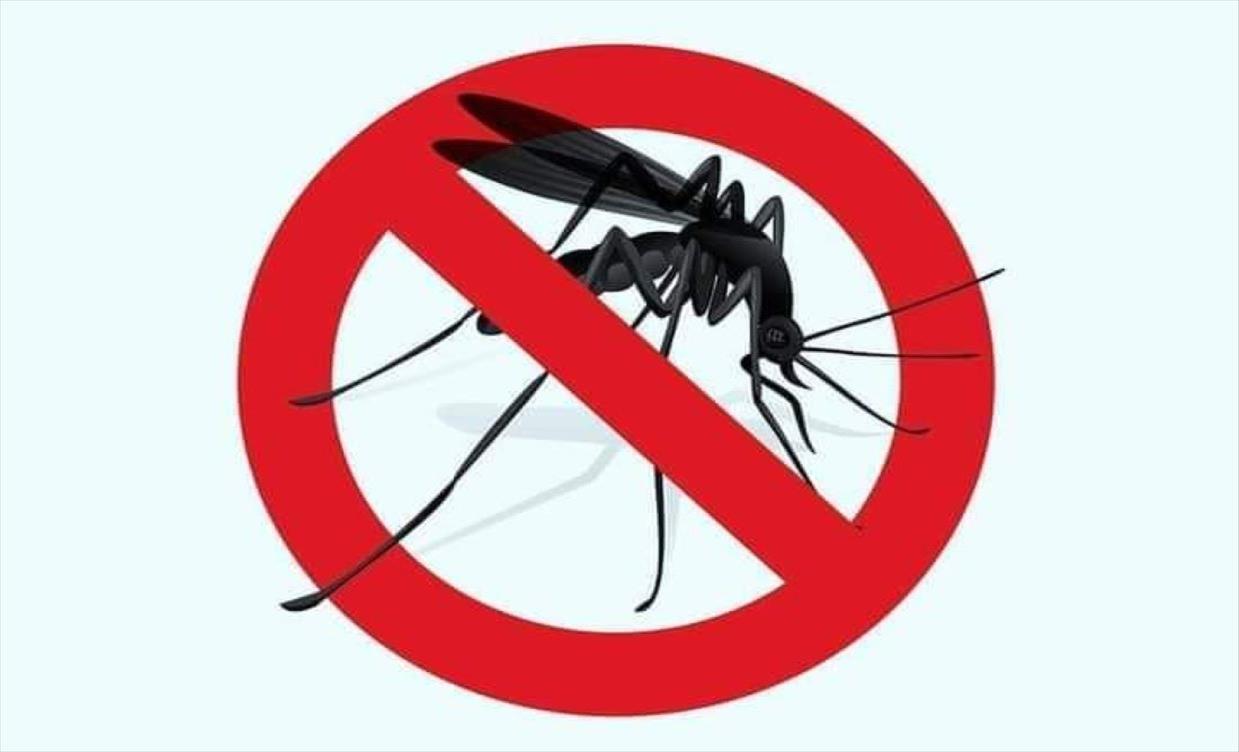 Слика од Пет начини да ги избегнете комарците