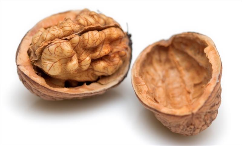 Слика од Оревите се корисни во мали количества