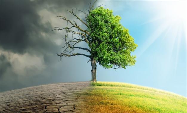 Слика од Дебата: Битката со климата е сега и тука и треба да се делува решително