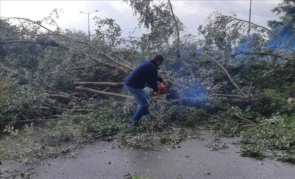 Слика од Отстранети паднати дрвја поради невреме на излезот од Тетово кон Гостивар
