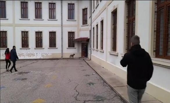 Слика од Без проблеми започна гласањето во Делчево