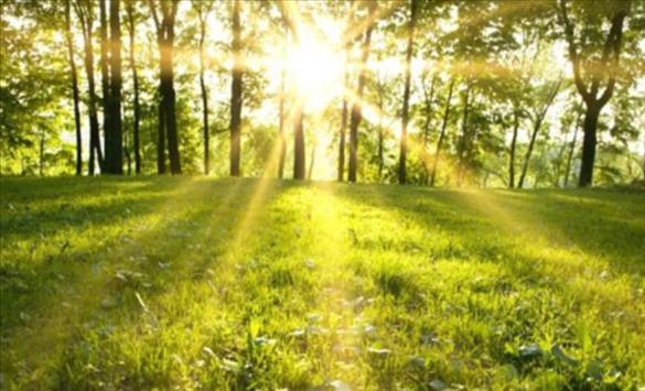Слика од Наутро студено, преку ден сончево